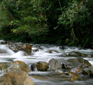 The rapids of Taman Negara Endau Rompin.