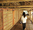 The cozy interior of the Rungus Longhouse in Sabah.